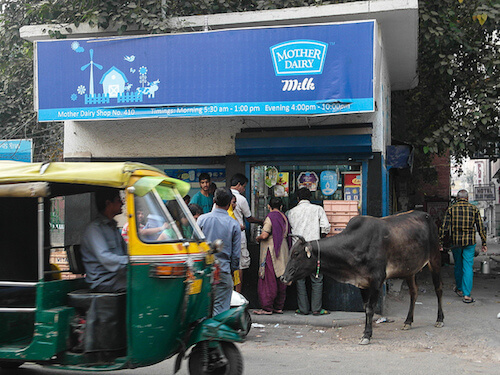 A Mother Dairy store in New Delhi. Photo by Alan Morgan.